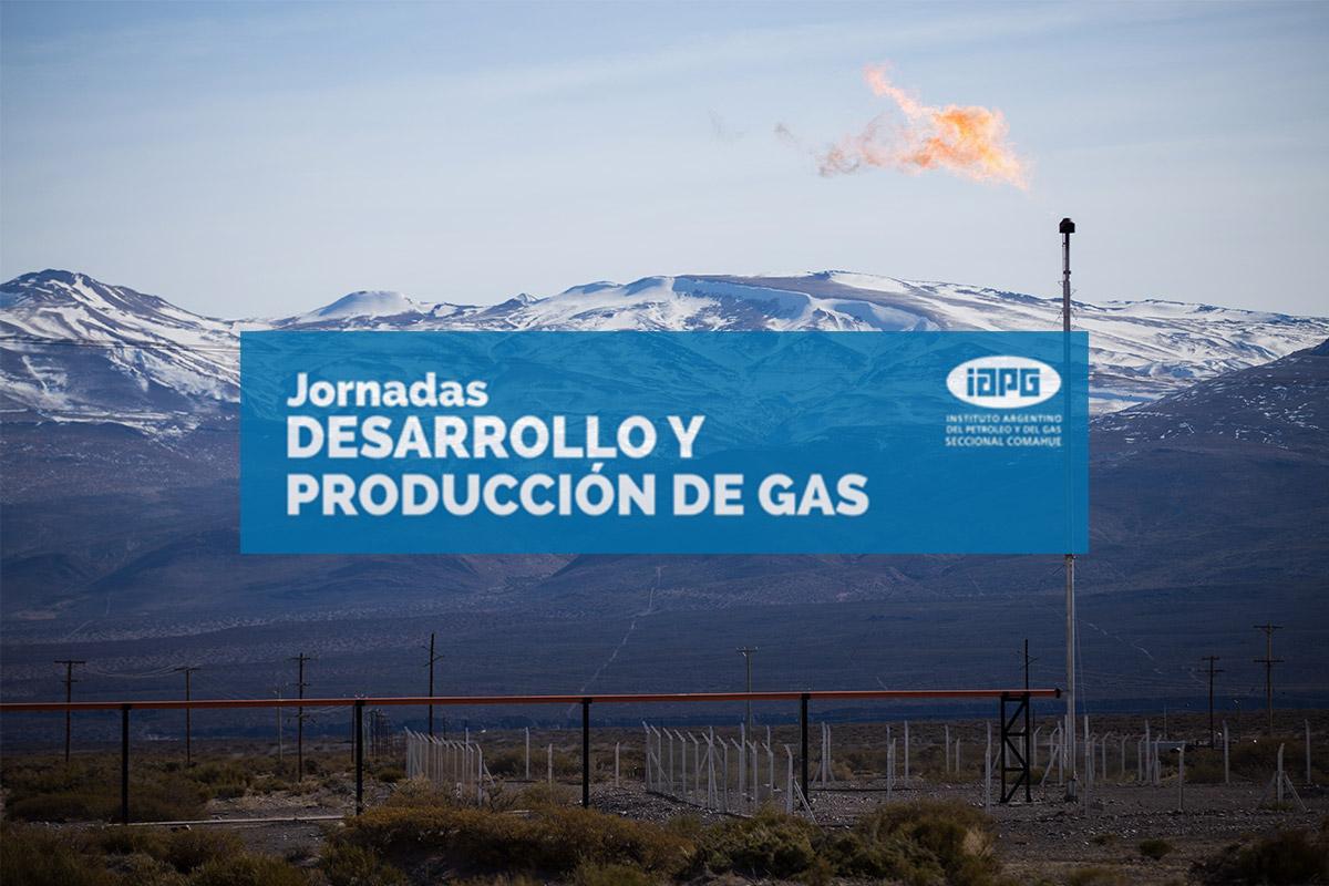 IAPG - Jornadas de Desarrollo y Producción de Gas - 2017